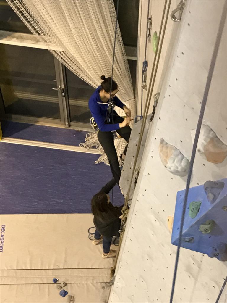 Démontage/nettoyage mur de Lardy Janvier 2017